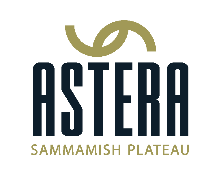 Astera Logo Final copy